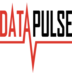 DataPulse Logo